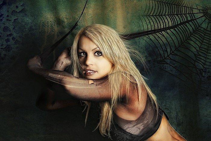 Black Widow (2009)