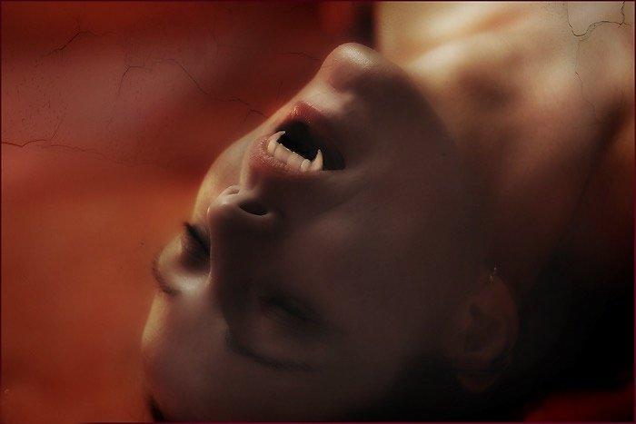 Xenomorph (2008)